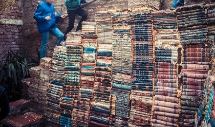 Escales de llibres